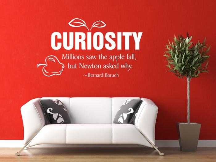 curiosity-quotes-37