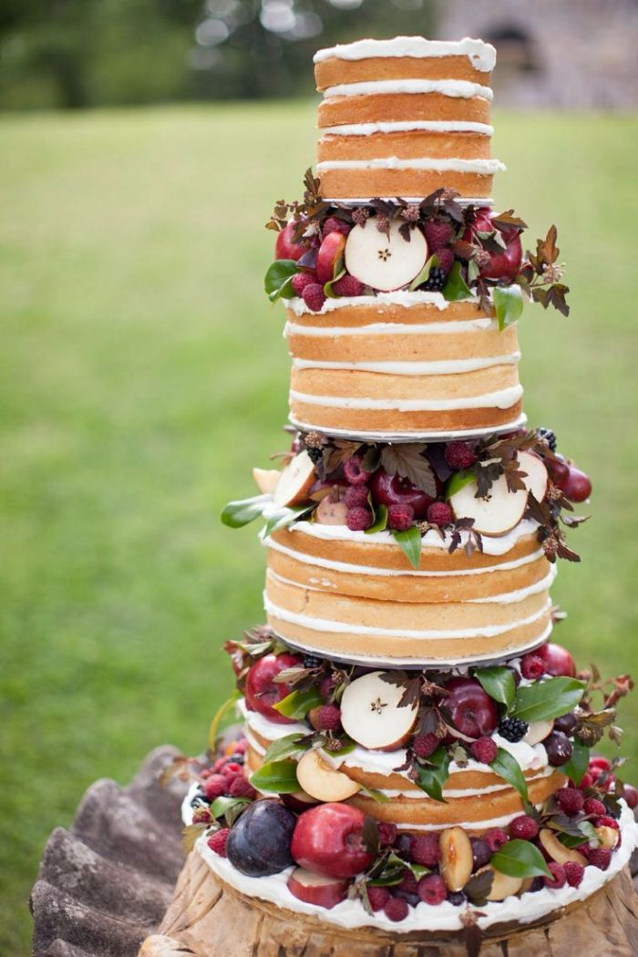 cake_1377aee68d3112a927d1645f5dd21be9--fruit-cakes-naked-cake.jpg